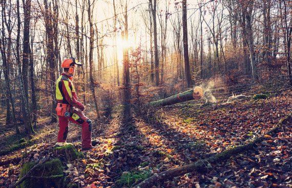Forst Wirt Forst Wuerth aus Tuebingen