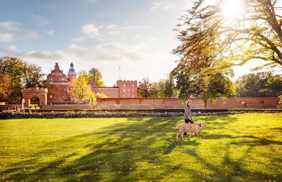 Schloss Broholm in Daenemark Hunderasse Broholmer
